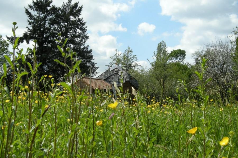 Zome 6 en Vendée printemps 2012